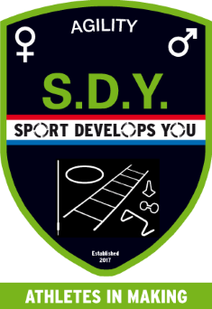 Sport Develops You Agility